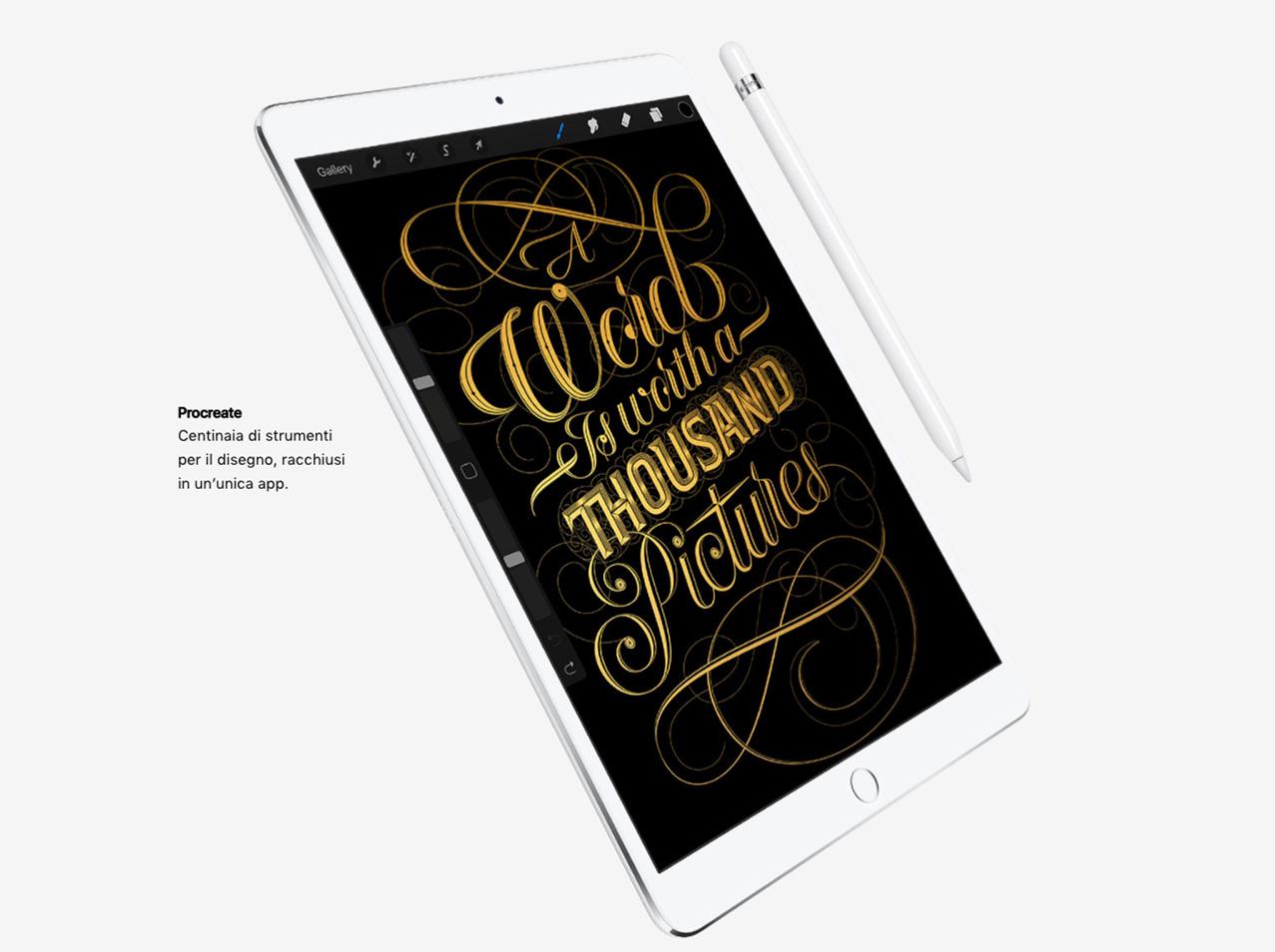 iPad Pro Procreate